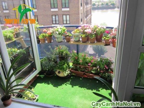 chau-hoa-nhua-trong-cay-hoa-canh-4-500x500 Chậu hoa nhựa trồng cây hoa cảnh