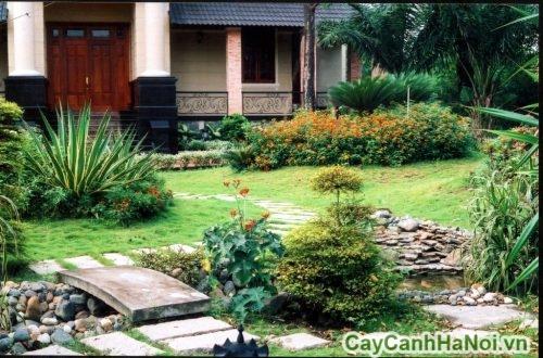 san-vuon-nha-pho-dep-03-500x330 Sân vườn nhà phố đẹp xanh mát