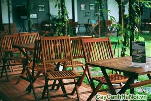 thiet-ke-canh-quan-cafe-san-vuon-ha-noi-01-500x332 Thiết kế cảnh quan cafe sân vườn Hà Nội đẹp