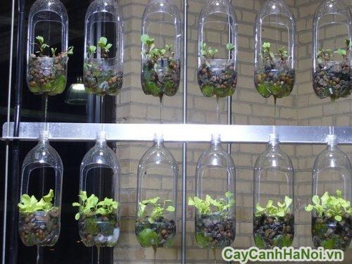 thiet-ke-vuon-dung-01-500x375 Thiết kế vườn đứng cho căn hộ chung cư nhỏ
