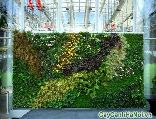 vuon-dung-trong-nha-01-500x384 Vườn đứng trong nhà và lợi ích