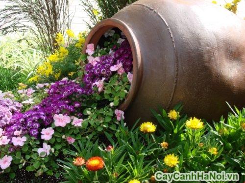 cay-tieu-canh-01-500x375 Cây tiểu cảnh - nên trồng cây như nào?