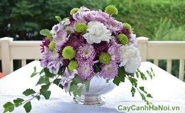 hoa de ban